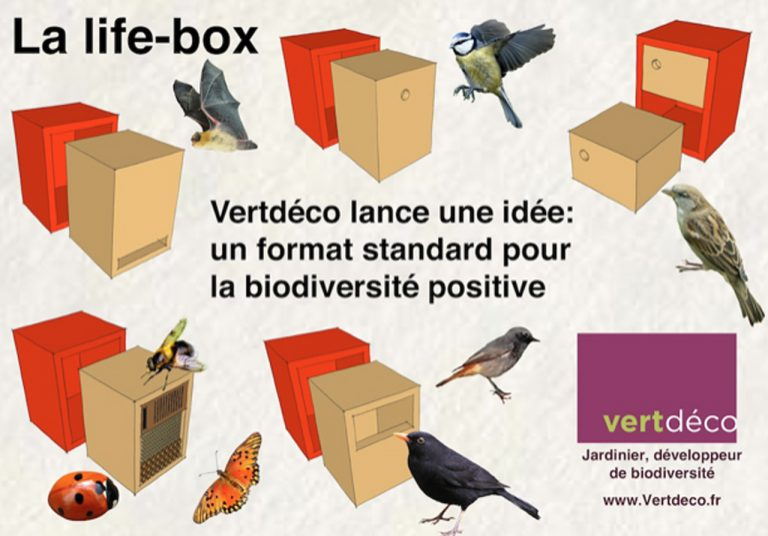 Life box par vertdeco